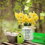 A Springtime Social Media Reboot